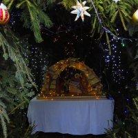 Между Рождеством и Крещением :: Андрей Лукьянов