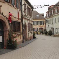 В этой деревне все улицы украшены елочками ... :: Mariya laimite