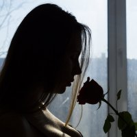 Роза :: Mishanya Moskovkin