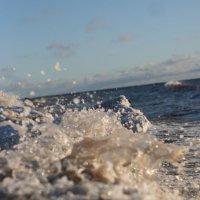 Волнуется финский залив :: Полина