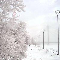 Зимний деньНазвание :: Александр Михайлов