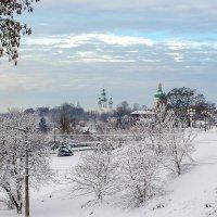 Зимне-снежная :: Сергей Тарабара