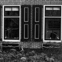 Деревня Гихорн, Голандия :: Евгений Сладкевич