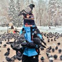 Холодно Мальчик Голуби :: Сергей