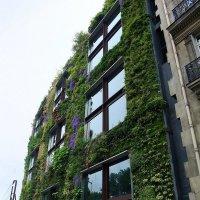 Это Париж :: tatiana