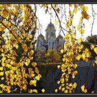 Мамаев курган. Осенние листья. :: Юрий Гуков