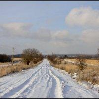 В деревню.... :: Алексей Дмитриев