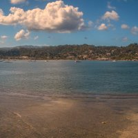тропики :: svabboy photo