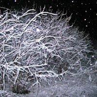Ночной снегопад :: Татьяна Королёва