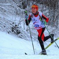 Крещенский лыжный марафон 2018-3 :: Андрей Бондаренко