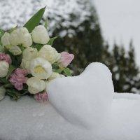 Растопить сердце.... :: Mariya laimite