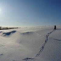 на  другом  берегу  зимы :: Владимир Коваленко