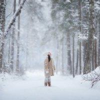 Снежный лес :: Юлия Дурова