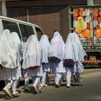 Из школы.Мусульманская часть Шри Ланки. :: Oleg