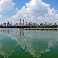 Нью Йорк, Центральный парк :: Ольга Маркова