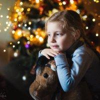 В ожидании Деда Мороза :: Елена Рябчевская