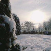 Зимняя сказка, а ведь и правда на фотографии как в сказке, правда? :: Дмитрий Скачков