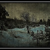 Зимняя зарисовка :: Aleksandr Ivanov67 Иванов