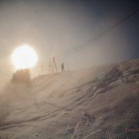 В снежной пустыне :: Алексей Астапенко