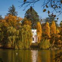«…Снова в старом парке бродит осень, Смотрит в окна золотистым оком. …» :: Андрей Нибылица