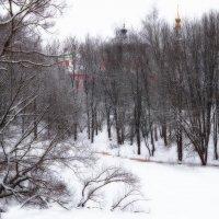 Природа Рыбинска :: Александр Ребров
