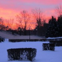 Алый рассвет в январе :: Дмитрий Никитин