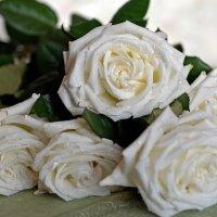 """""""Как хороши , как свежи были розы..."""" :: Тамара Бучарская"""