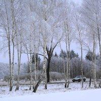 Зимняя дорога :: Маргарита Батырева