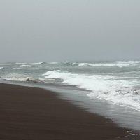 Туманный берег океана :: Майор Майоров
