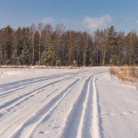 Зимняя дорога. :: Виктор Евстратов