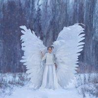 Ангел :: Виктория Уточкина