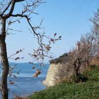 Пейзаж без маяка :: Валерий Дворников