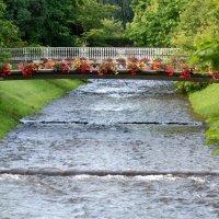 Цветочный мостик :: Николай Танаев