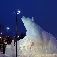 Любимец города :: Евгения Корнилкова