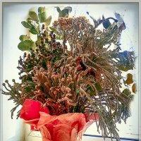 Цветы :: алекс дичанский