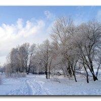 Зимние дорожки. :: Чария Зоя