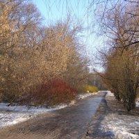 ледяная дорожка :: Анна Воробьева