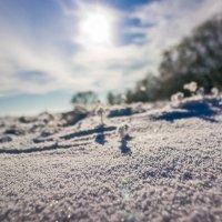 снежные ровнины :: Niki_ Nik