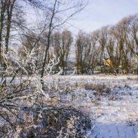 снег :: Niki_ Nik