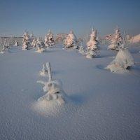 Зимние зарисовки :: Олег Гулли