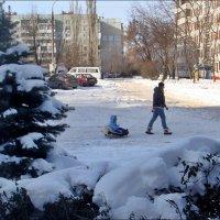 И у нас настоящая зима! :: Нина Корешкова