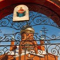 Сквозь кружево ворот. Бариновка. Самарская область :: MILAV V