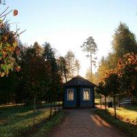 Утро в парке. :: Нина Бурченкова.