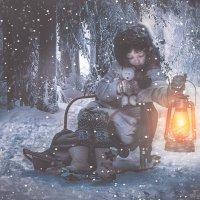 Зимняя сказка в лесу. :: ALISA LISA