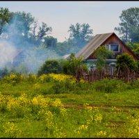 Хорошо летом в деревне! :: Алексей Патлах
