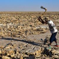 добыча соли в пустыни Данакиль :: Георгий