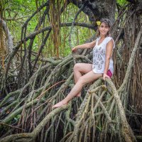В мангровых зарослях :: Илья Шипилов