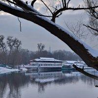 Зима. Катера на приколе. :: Валентина Данилова