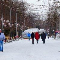 Прогулка по зимнему парку... :: Тамара (st.tamara)
