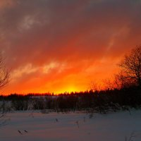 закат зимой :: vladimir polovnikov